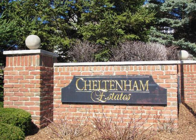 Neighborhood of Cheltenham Estates in Novi MI real estate
