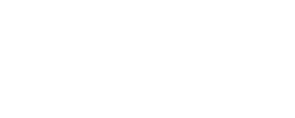Pam Ryan-Brye Group