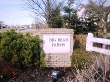 big_bear_farms
