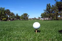 golf course on kiawah island