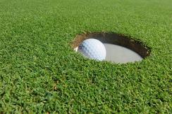 golf ball in a hole