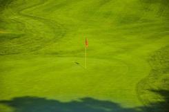 fairway on a golf course
