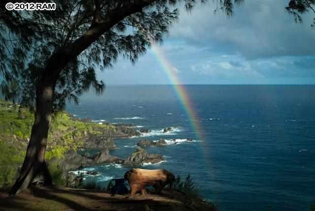 retreat property in East Maui