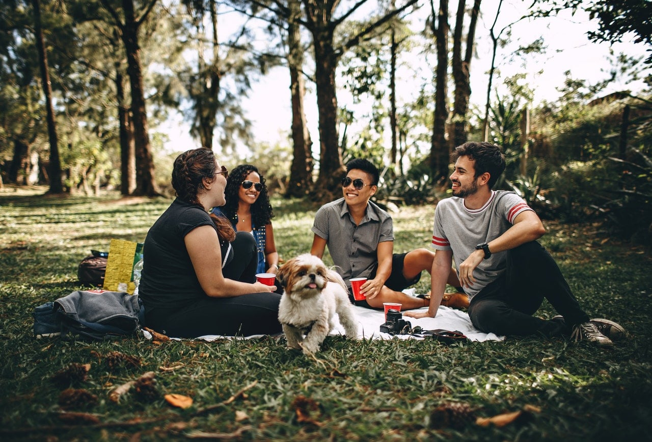 Group of young people having a picnic in a park.