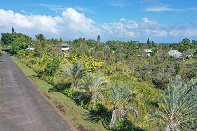 Almost half an acre of land in Puna Beach Palisades on Kalaunu Street.