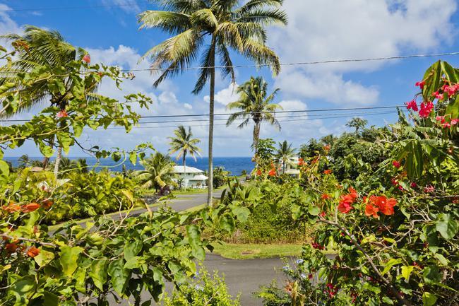 Ocean view corner lot offered at $60K