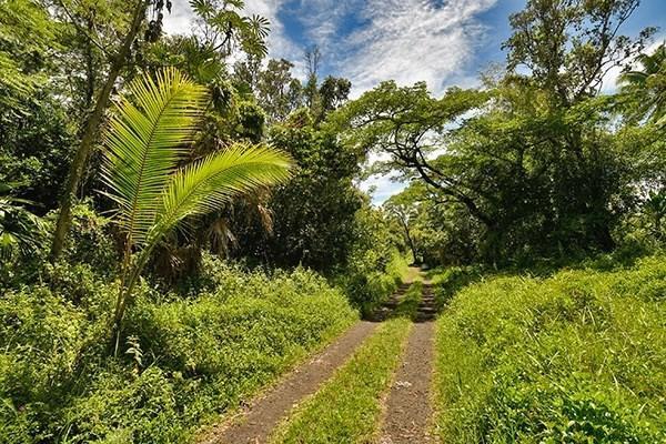 3.44 Acres on the Big Island