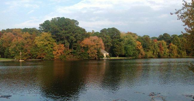 Tony Tank Pond in Salisbury MD