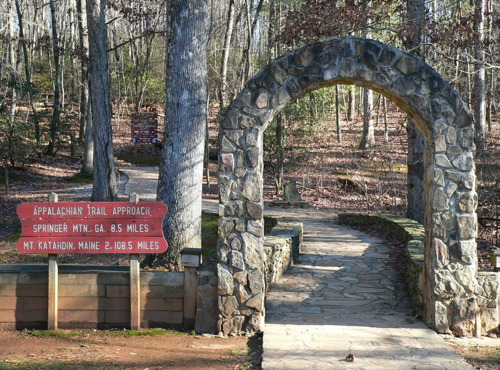 a hiking trail through pine trees