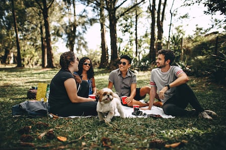 Four people sitting around a picnic blanket in a park.