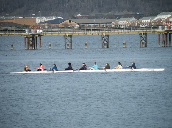 team of rowers on the Potomac River