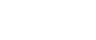 The Friedson Group