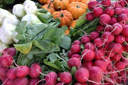 vegetables grown in a community garden
