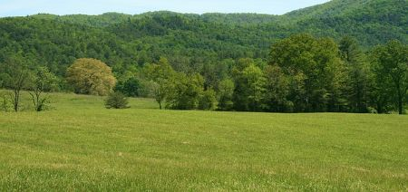 mountains and fields in Tennessee