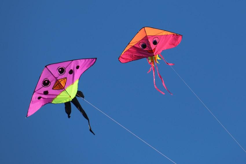 kites flying in air