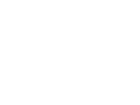 Triangle Real Estate Chix