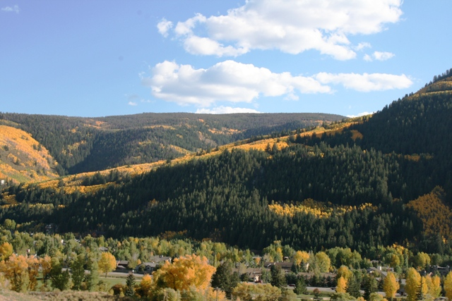 A mountain valley shrouded in yellow and green trees with a few homes peeking through the foliage.