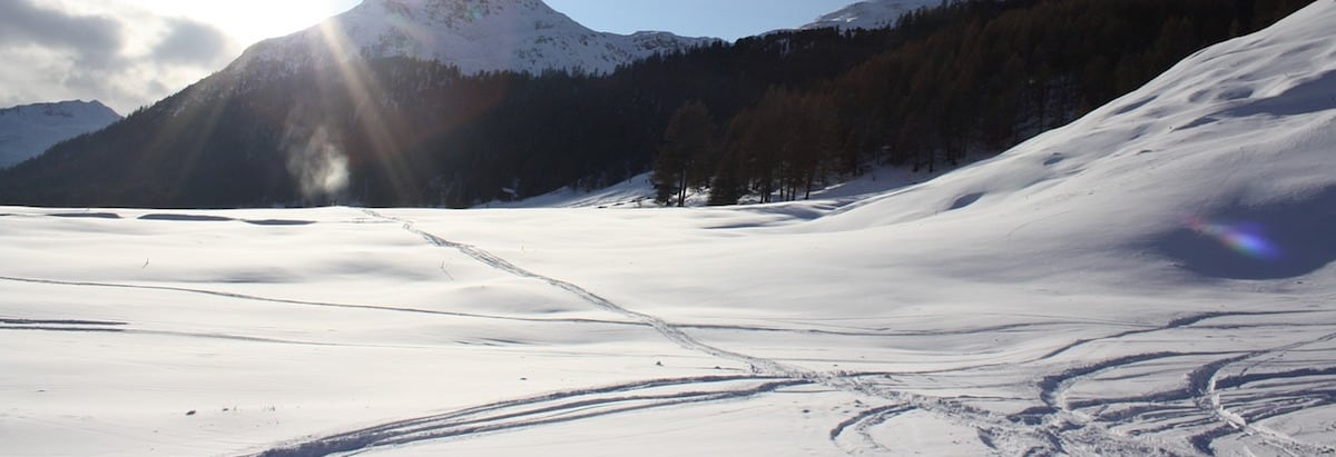 A mountainside covered with snow and cross-country ski tracks.