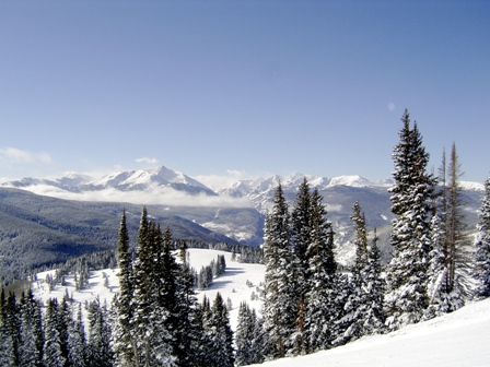 A snow-covered mountainside looking onto a valley filled with evergreen trees.